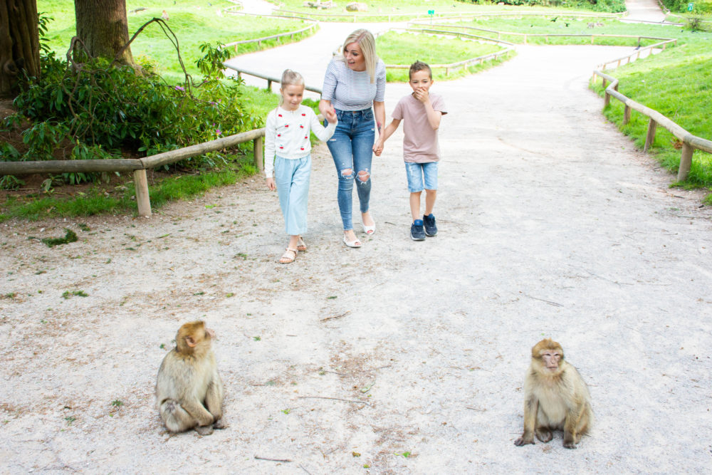 Mother's Day at Monkey Forest