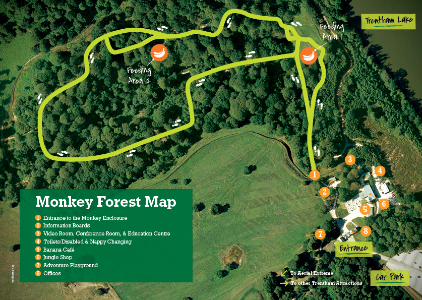 Forest Map & Accessibility - Monkey Forest Trentham on