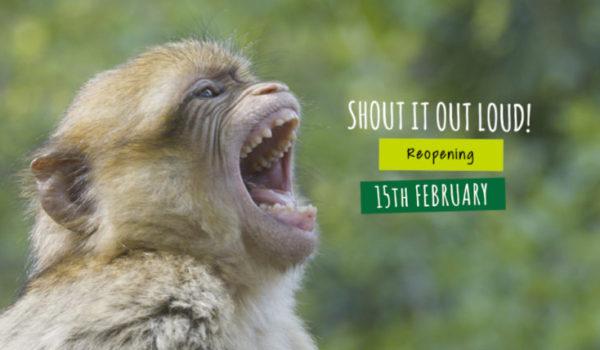 Trentham Monkey Forest - SS - Reopening 2020 - Website Banner