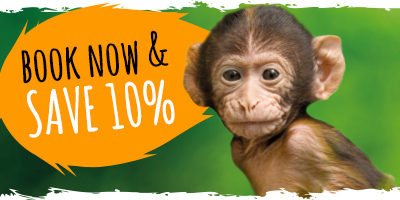 Book now & SAVE 10%