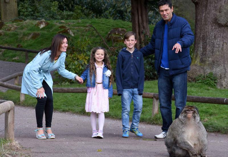 Family visiting Trentham Monkey Forest